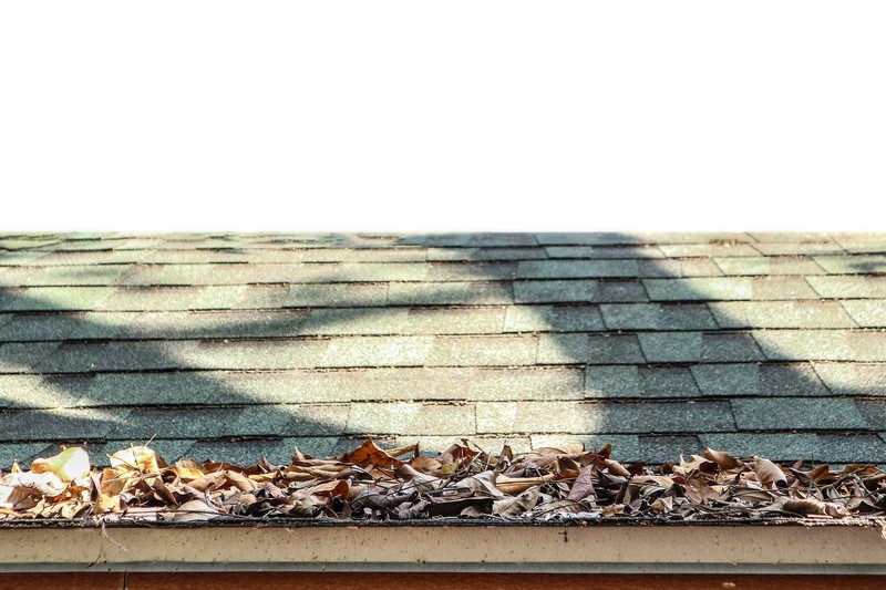 Composition-Roof-Cleaning-Tacoma-WA